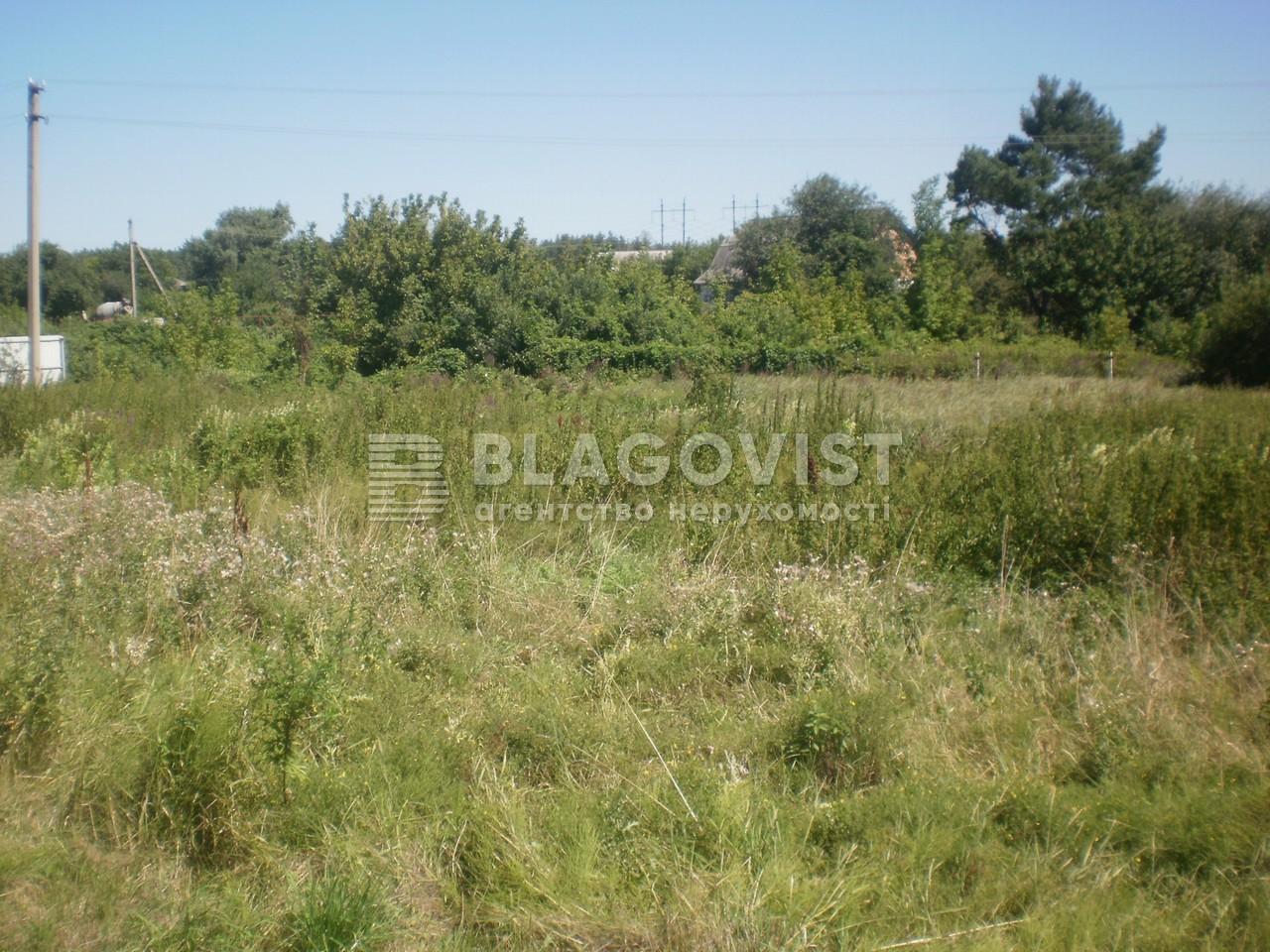 Земельный участок F-30481, Погребы (Броварской) - Фото 2
