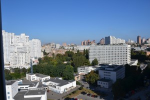 Квартира Драгомирова Михаила, 4, Киев, Z-522224 - Фото 32