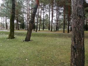 Дом Хотяновка, M-26423 - Фото 21