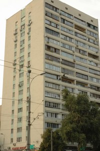 Квартира Черновола Вячеслава, 30, Киев, A-110230 - Фото3