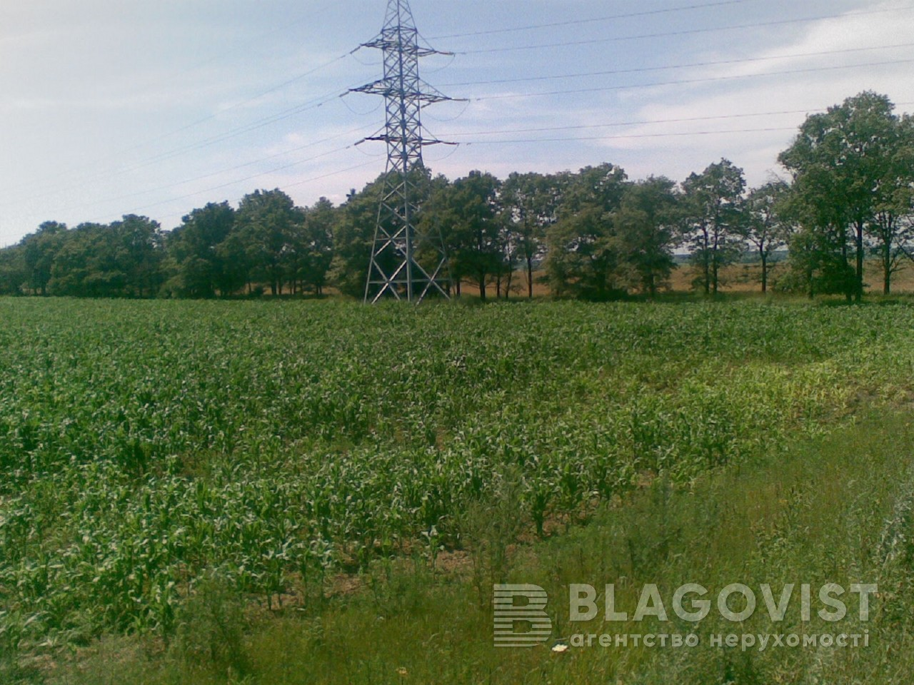 Земельный участок M-29482, Княжичи (Броварской) - Фото 3