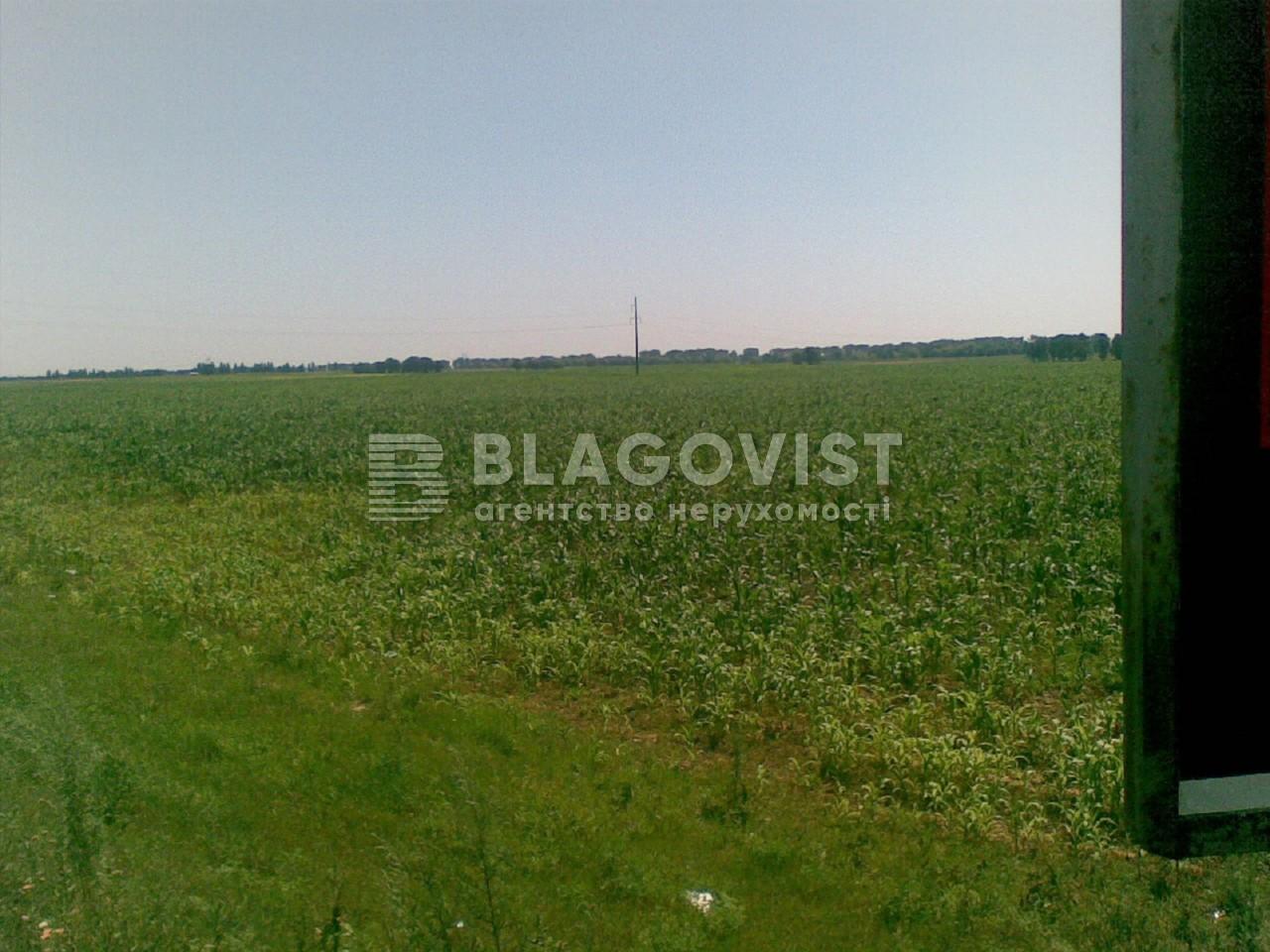 Земельный участок M-29482, Княжичи (Броварской) - Фото 2