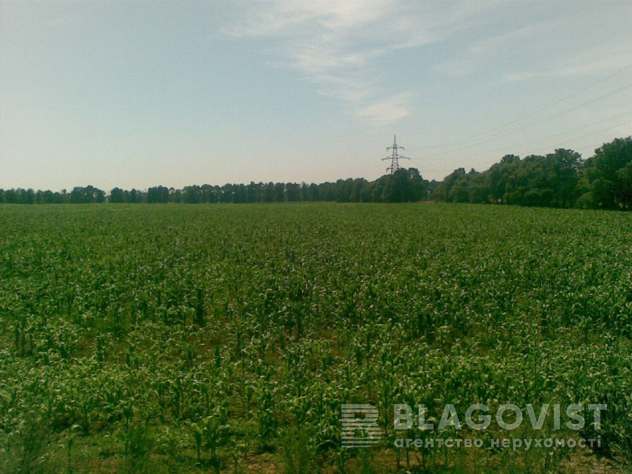 Земельный участок M-29482, Княжичи (Броварской) - Фото 1