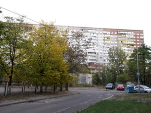 Apartment Draizera Teodora, 9, Kyiv, Z-603831 - Photo2
