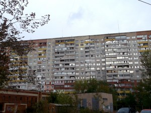 Apartment Draizera Teodora, 9, Kyiv, Z-603831 - Photo3