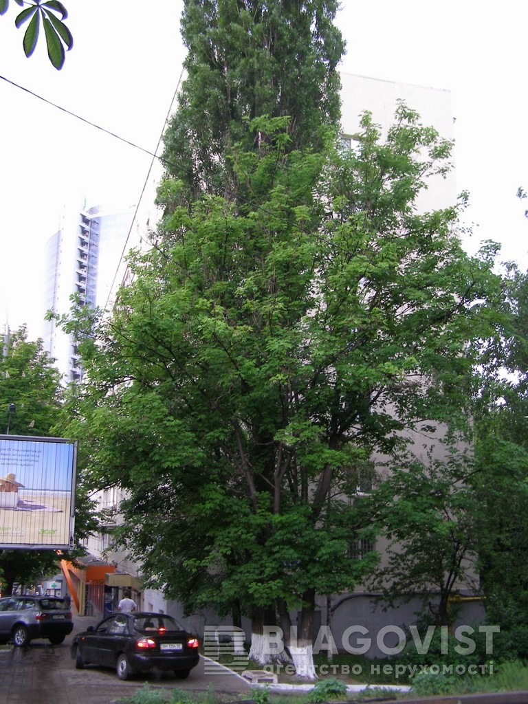 Квартира E-29804, Лесі Українки бул., 3, Київ - Фото 12